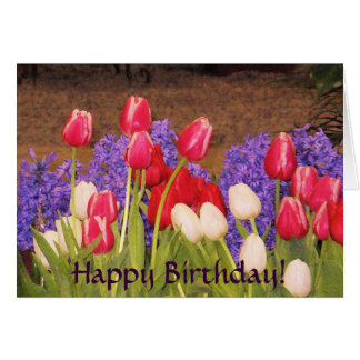 Happy Birthday! Tulips card
