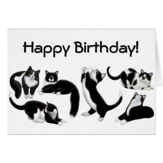 Happy Birthday Tuxedo Cats Card