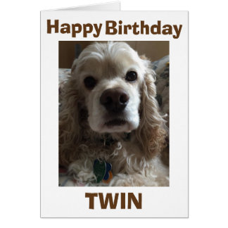 HAPPY BIRTHDAY TWIN SAYS THIS CUTE COCKER SPANIEL CARD