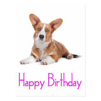 Happy Birthday Welsh Corgi Puppy Dog  Postcard