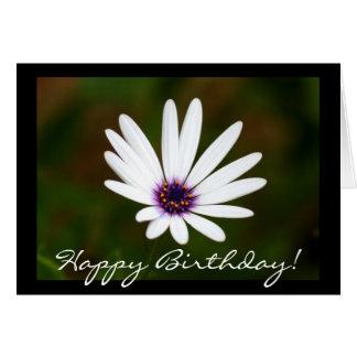 Happy birthday White daisy greeting card