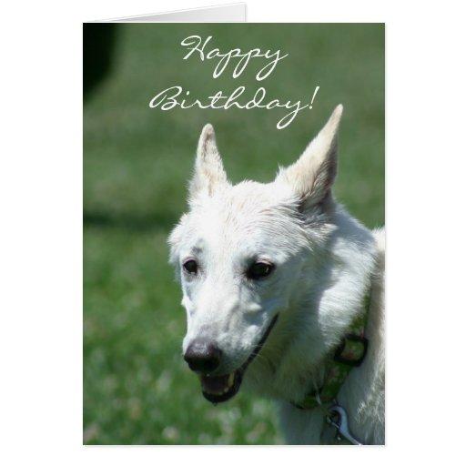 Happy Birthday White German Shepherd greeting card