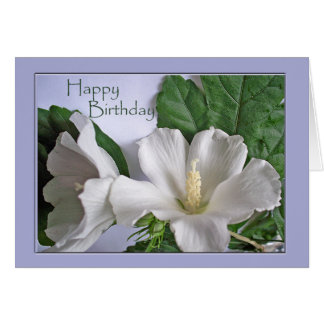 Happy Birthday, White Hibiscus, Rose of Sharon Card