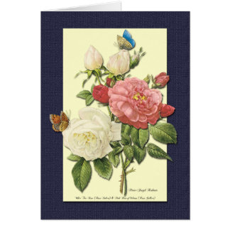 Happy Birthday White Red Roses Botanical Art Card