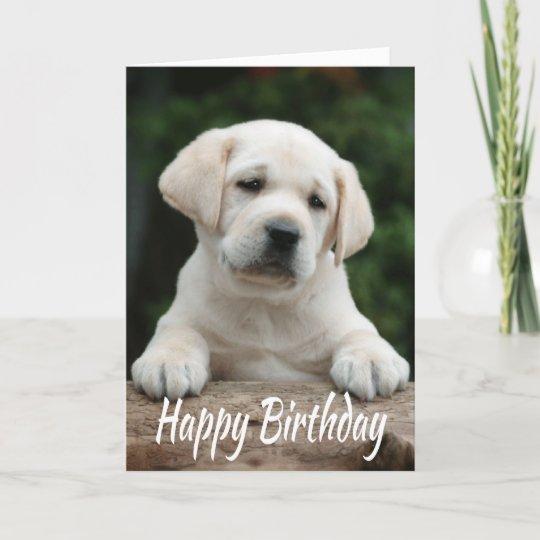 Happy Birthday Yellow Labrador Retriever Puppy Dog Card Zazzle