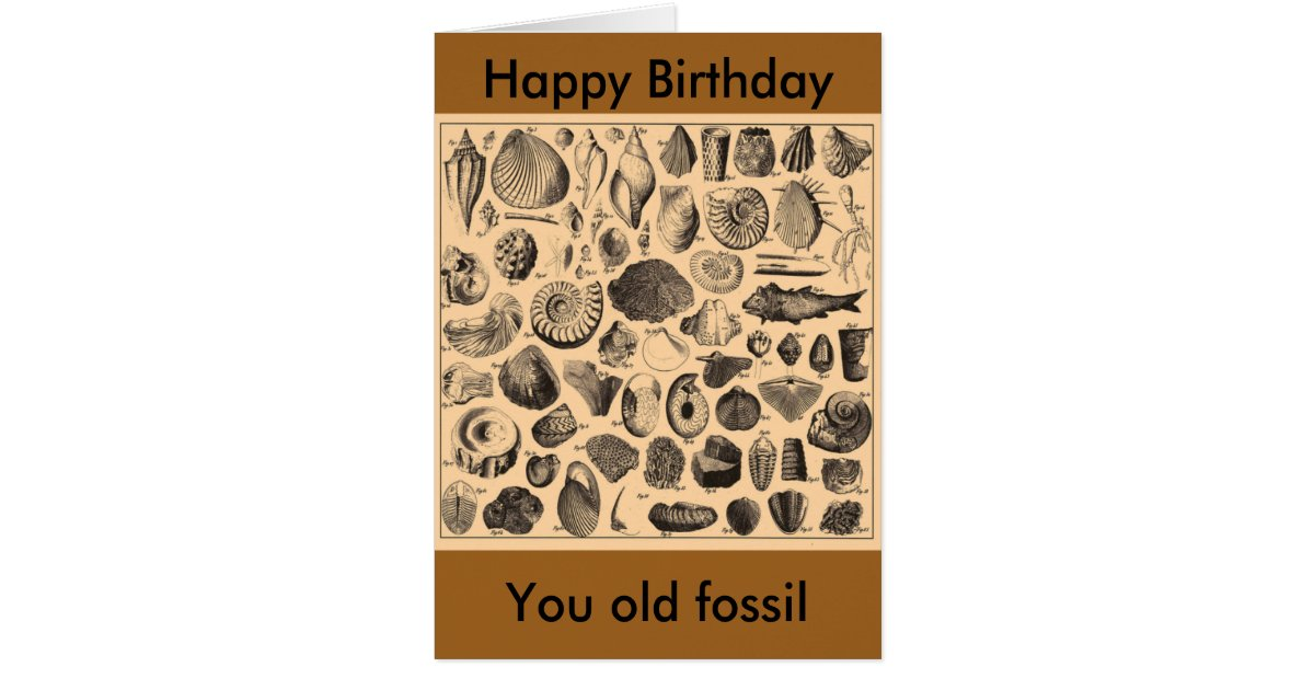 Happy birthday, you old fossil card | Zazzle.com