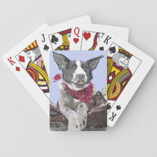 Happy Black and White Border Collie Playing Cards