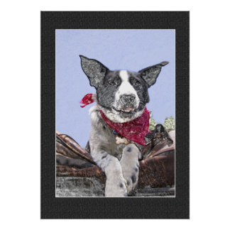 Happy Black and White Border Collie Poster