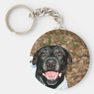 Happy black lab mix dog with fall leaves backgroun basic round button keychain