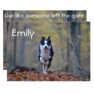 Happy Border Collie Dog Graduation Card