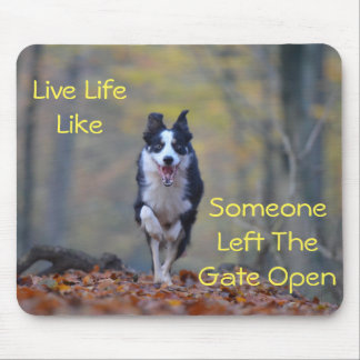 Happy Border Collie dog running and playing Mouse Pad