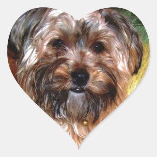 Happy Border Collie Heart Sticker
