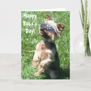 Hy Boss S Day Yorkshire Terrier Greeting Card