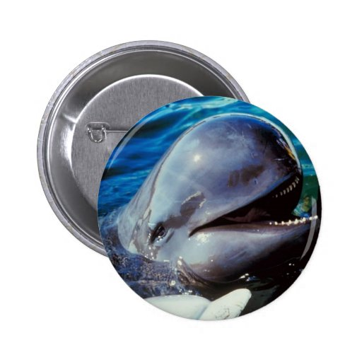 Happy Bottlenose Dolphins 2 Inch Round Button