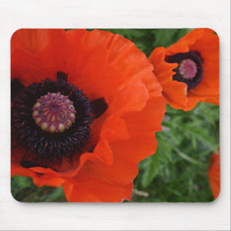 Happy Bright Red Chinese Poppy Mouse Pad