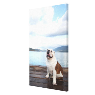 happy bull dog sitting on deck near lake canvas print