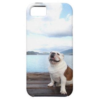 happy bull dog sitting on deck near lake iPhone SE/5/5s case
