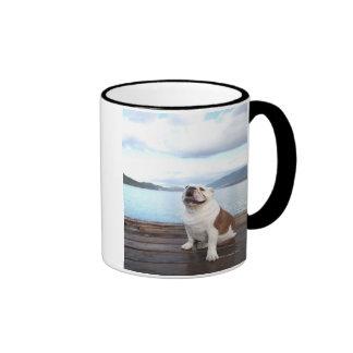 happy bull dog sitting on deck near lake mug