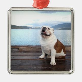 happy bull dog sitting on deck near lake square metal christmas ornament
