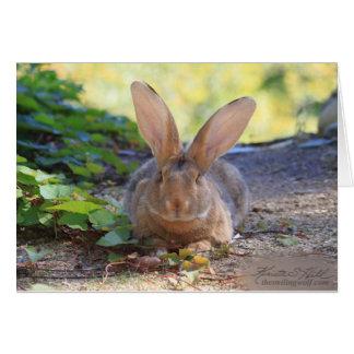 Happy Bunny Day! Card