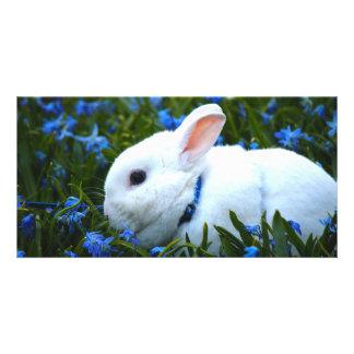 Happy Bunny Custom Photo Card