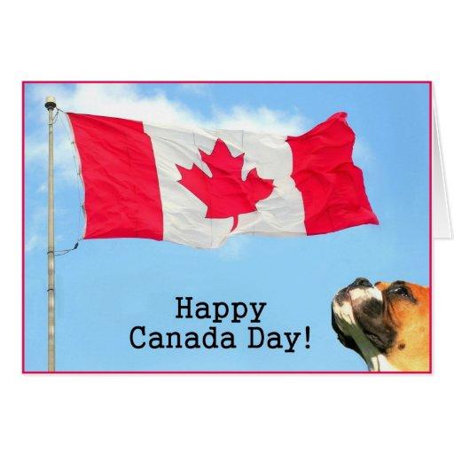 Happy Canada Day Boxer Greeting Card Zazzle