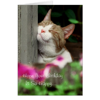 Happy Cat Birthday Card