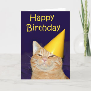 Birthday Greeting Card NEW BIRTHDAY Orange Tabby Cat Kitten Balls of Yarn Play