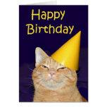 Happy cat Happy Birthday Card