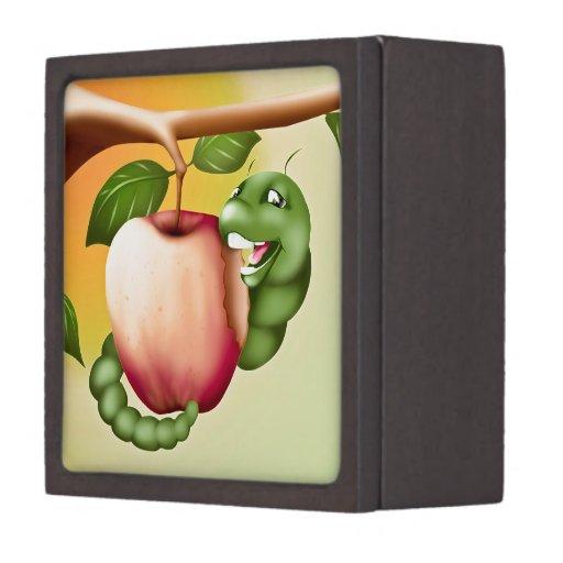 Happy Catterpillar Premium Trinket Boxes