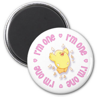 Happy Chick 1st Birthday Pink Fridge Magnets