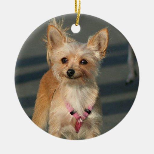 Happy Chihuahua ornament