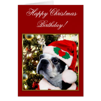 Happy Christmas Birthday Boston terrier Card