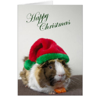 Happy Christmas from Scruffy Greeting Card