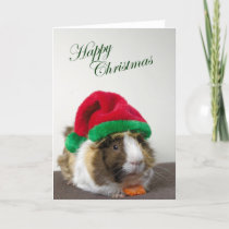 Happy Christmas from Scruffy Holiday Card
