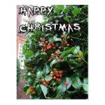 Happy Christmas Post Card