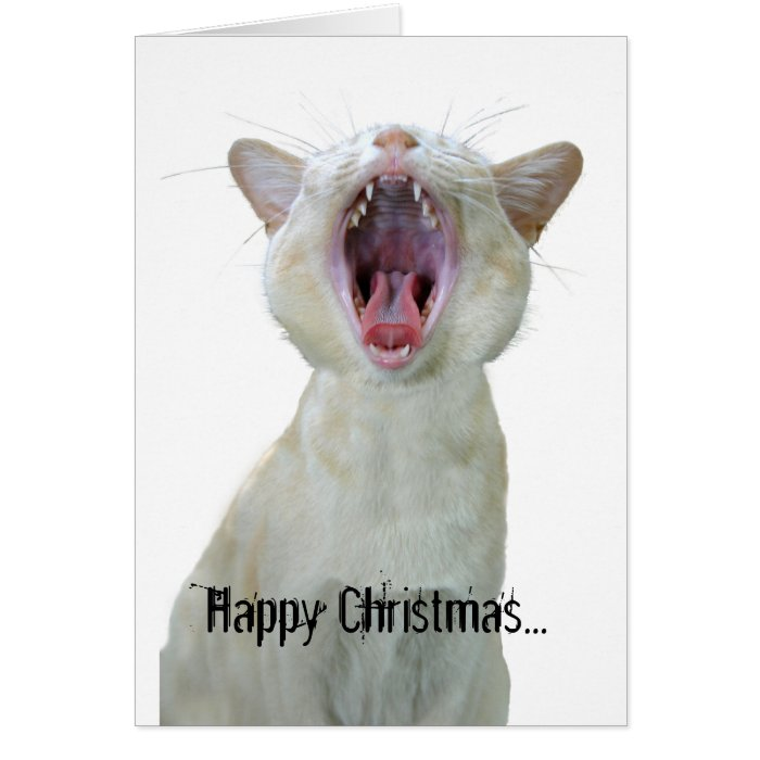 Happy Christmas to mew! Card