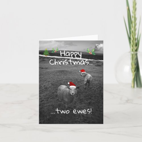 Happy Christmas Two Ewes Holiday Card