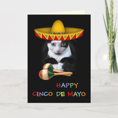 Happy Cinco De Mayo Cat Card