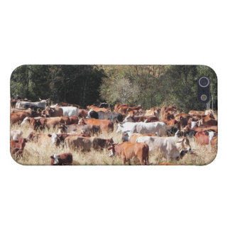 Happy Cows Cover For iPhone SE/5/5s