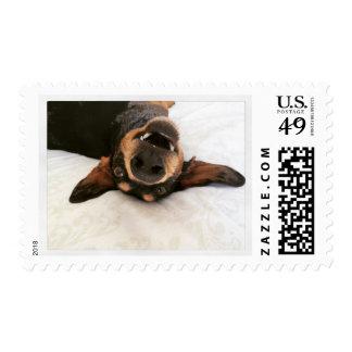Happy Dachshund Postage