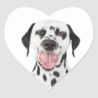 Happy Dalmatian Puppy Dog Greeting Stickers Labels