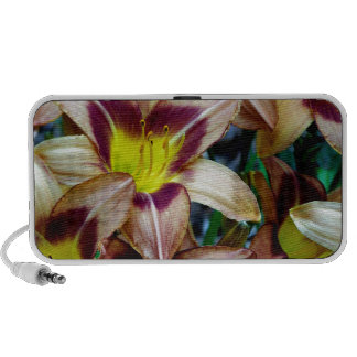 Happy Daylilies Portable Speaker
