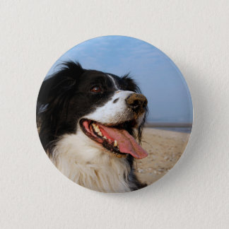 Happy dog at the beach button
