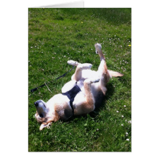 Happy Dog Card