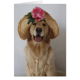 Happy Dog! Greeting Cards