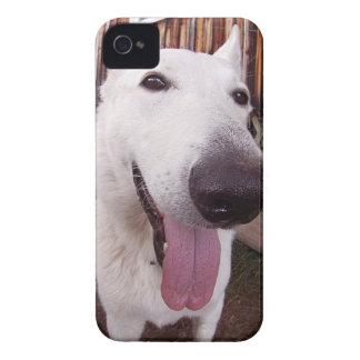 Happy dog! iPhone4 case