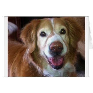 Happy Dog Days Card