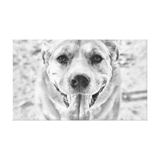 Happy Dog face canvas wrap print