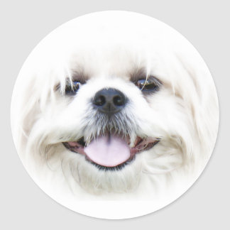 Happy dog face sticker